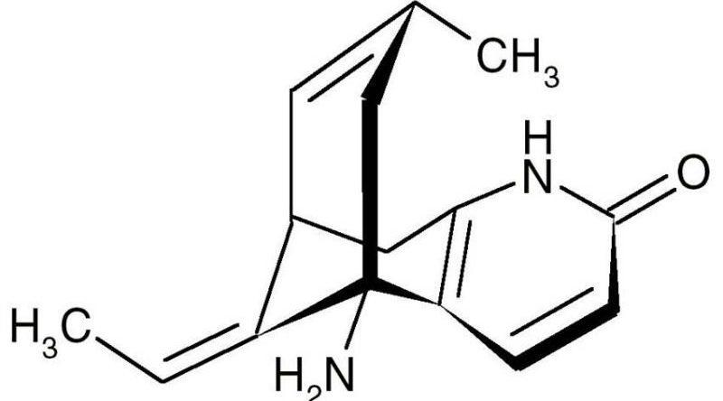 Huperzin A Formel